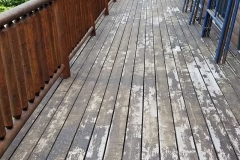 deck-02